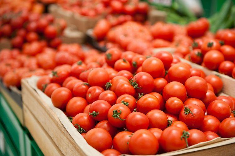 """Azərbaycanın 89 müəssisəsinə Rusiyaya pomidor ixrac etməsinə icazə verilib<b style=""""color:red""""></b>"""