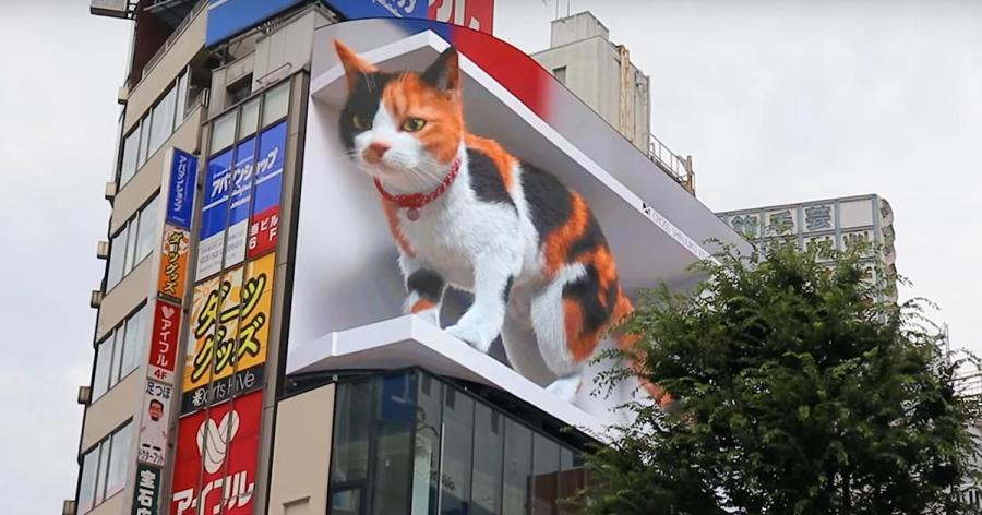 """Tokionun yeni qonağı 3D pişik<b style=""""color:red""""></b>"""