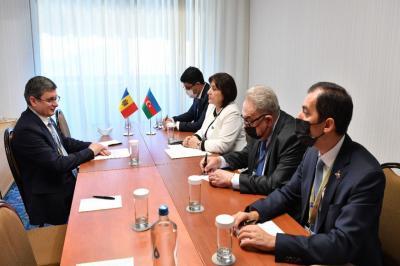 Sahibə Qafarova Moldova Parlamentinin sədri ilə görüşüb